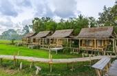 Mô hình farmstay Du lịch nghỉ dưỡng hay hình thức biến tướng để chiếm đất rừng