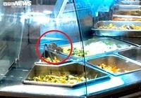 Kinh hãi chuột bò lúc nhúc trên quầy thức ăn ở Aeon Mall Tân Phú TP HCM