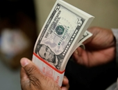 Tỷ giá ngoại tệ ngày 11 9 USD giảm, Euro tăng giá