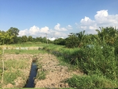 53 dự án khu dân cư ở huyện Bình Chánh có vấn đề