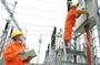 Hồ sơ dự thầu không hợp lệ, CTCP Đức Giang Việt Nam vẫn trúng thầu hàng loạt dự án tiền tỷ
