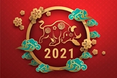 Bảo đảm nhân dân đón Tết Tân Sửu 2021 vui tươi, lành mạnh, an toàn, tiết kiệm