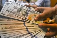 Tỷ giá USD hôm nay 8 1 Có dấu hiệu phục hồi trên thị trường quốc tế