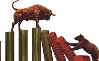 Bán là thua-mua là thắng, nhiều nhà đầu tư mất hàng khi thị trường chứng khoán rung lắc mạnh