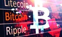 Giá bitcoin hôm nay 12 1 Thị trường rực đỏ, Bakkt sắp lên sàn NYSE