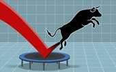 SAB, CTG tăng kịch trần, VN-Index hồi phục lên sát mốc 1 070 điểm