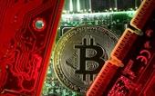 Bitcoin sẽ sớm cán mốc 100 000 USD, tất cả các công ty sẽ chấp nhận thanh toán bằng tiền số