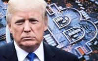 Lâu lâu mới xuất hiện, ông Trump gọi Bitcoin là trò lừa đảo khiến giá đồng tiền số này lao dốc