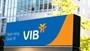 Cổ phiếu VIB tăng mạnh Kết quả kinh doanh là động lực hay game của nhà đầu tư cổ phiếu