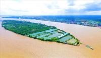 Cần Thơ Thu hồi dự án khu du lịch Cồn Sơn hơn 1 570 tỷ đồng của TMS Group