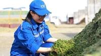 TH được vinh danh Nơi làm việc tốt nhất châu Á 2021